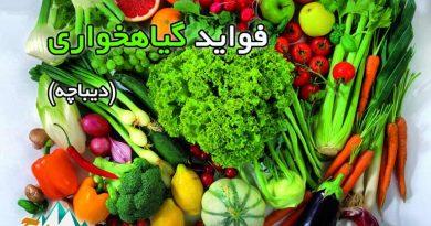 فواید گیاهخواری