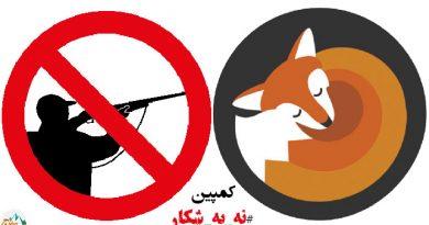 کمپین نه به شکار