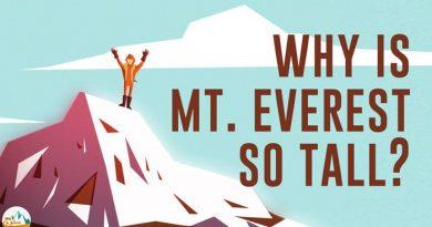 چرا اورست اینقدر مرتفع شده است؟