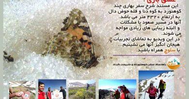 عشق بازی ،مستند دیدنی از صعود بهاری به قله دنا (حوض دال ۴۳۲۰ متر)