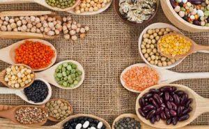 منابع پروتئین گیاهی مخصوص کوهنوردان و طبیعت دوستان + جایگزین گوشت